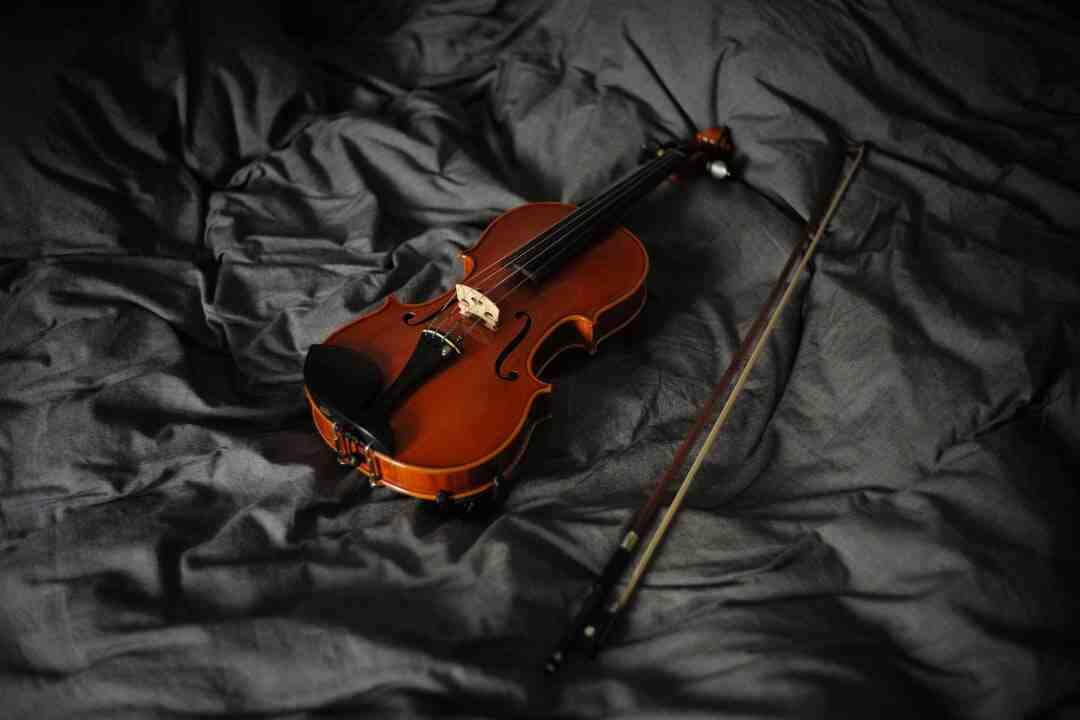 Comment cuisiner des têtes de violon