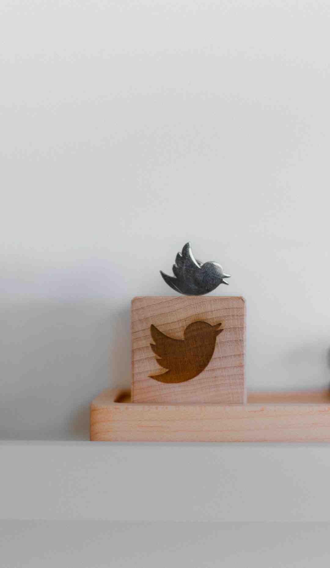 Quelle est l'importance de Twitter ?